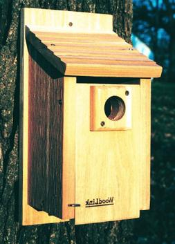 WoodLink BB3 15 in. Traditional Bluebird House
