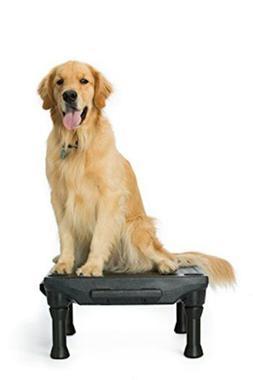Blue-9 Pet Products The KLIMB Dog Training Platform and Agil