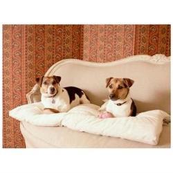 Essential Pet Products 12302 Medium Plush Sleep-ezz Mats - D
