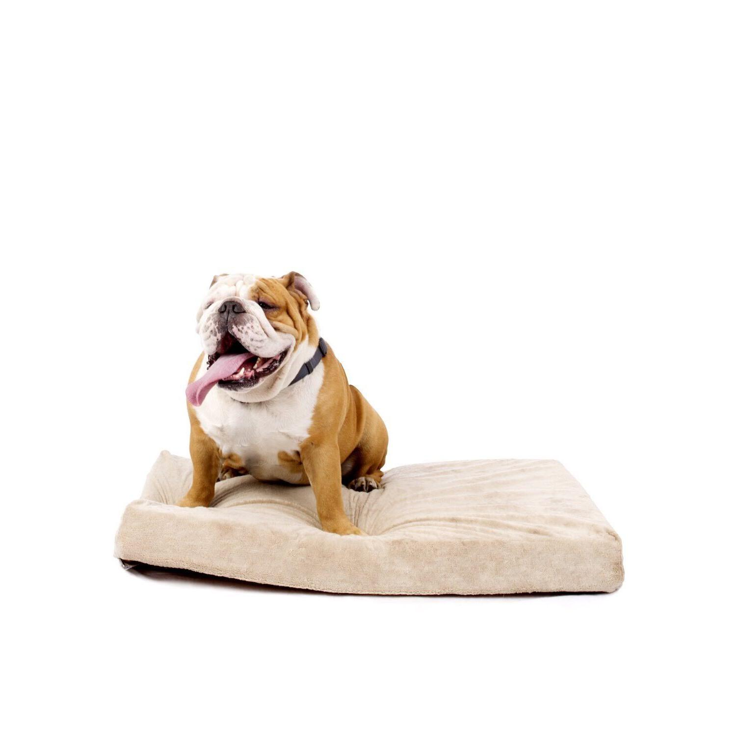 4 solid memory foam orthopedic dog bed