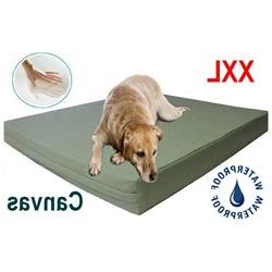 55JP 55X37X4 XXL Extra Large Orthopedic Memory Foam Dog Pet