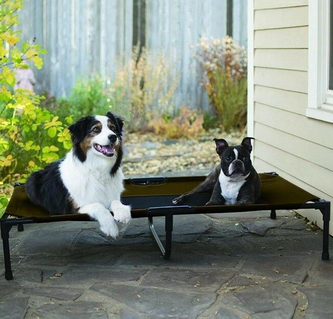 Big Dog Bed Frame Elevated Raised Pet Cot Folding Travel XL