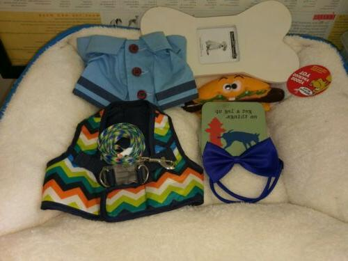 Small boy dog bundle: bed, harness, coat, leash, toy, bow ti