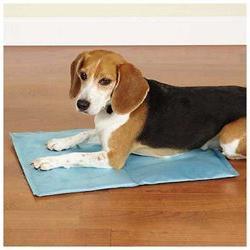 Cool Pup Dog Mat, Large