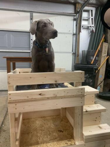 Custom Built dog bed Pet Area House