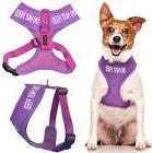 Dog Vest Pet Harness Color Coded Do Not Feed Purple Padded W