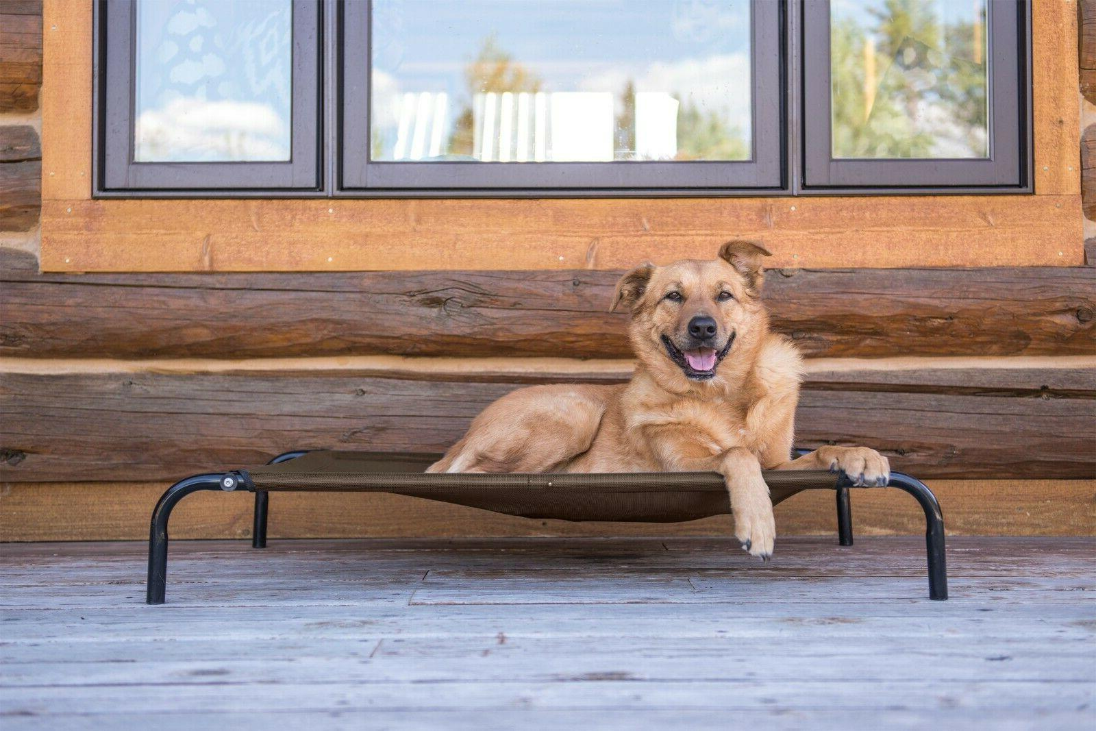 elevated dog cot pet bed hammock