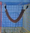 Ferret/Rat/Sugar Glider/guinea Pig/Pet Bed - Bedding Hammock
