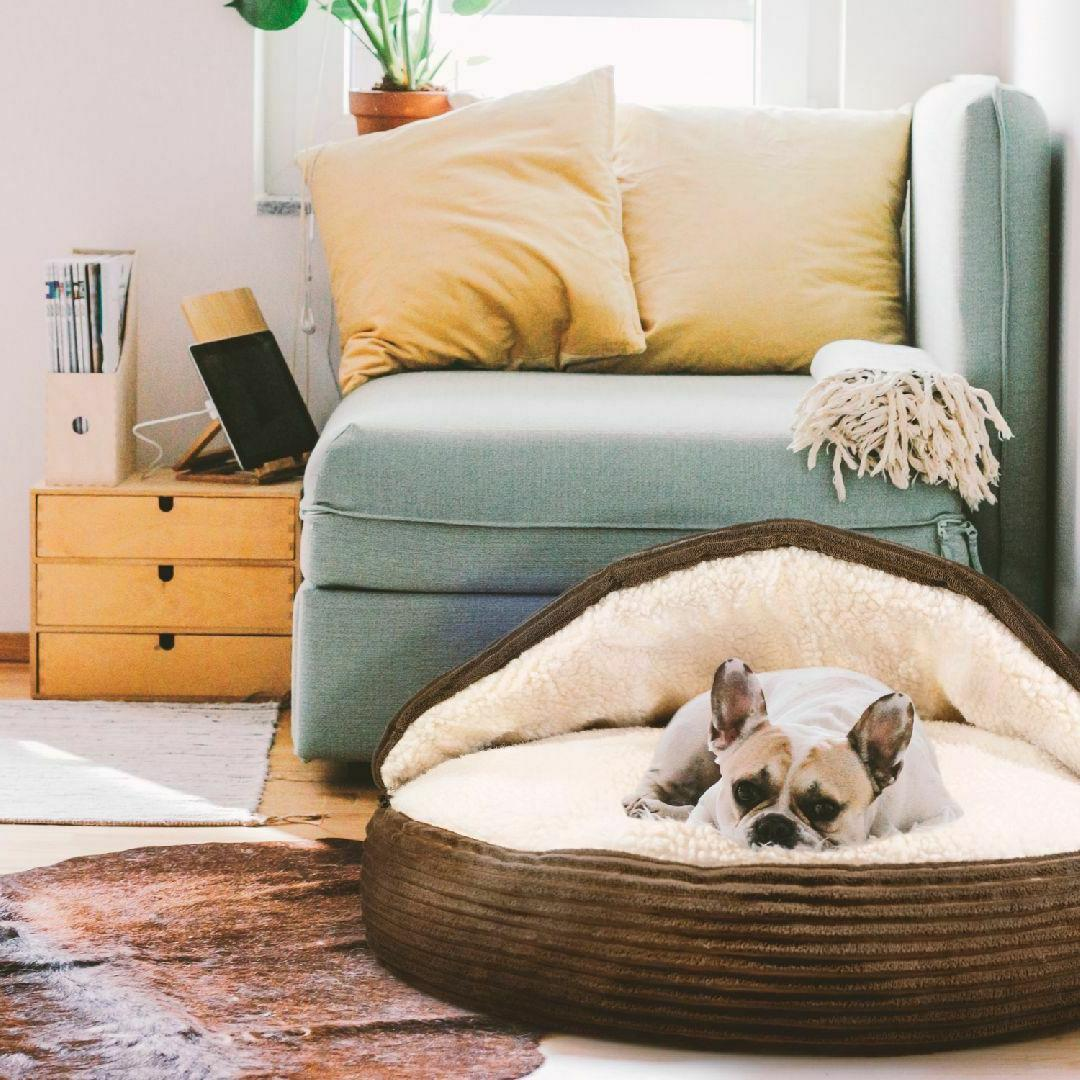 Fleecy Soft Bed for Dog Removable Top inches