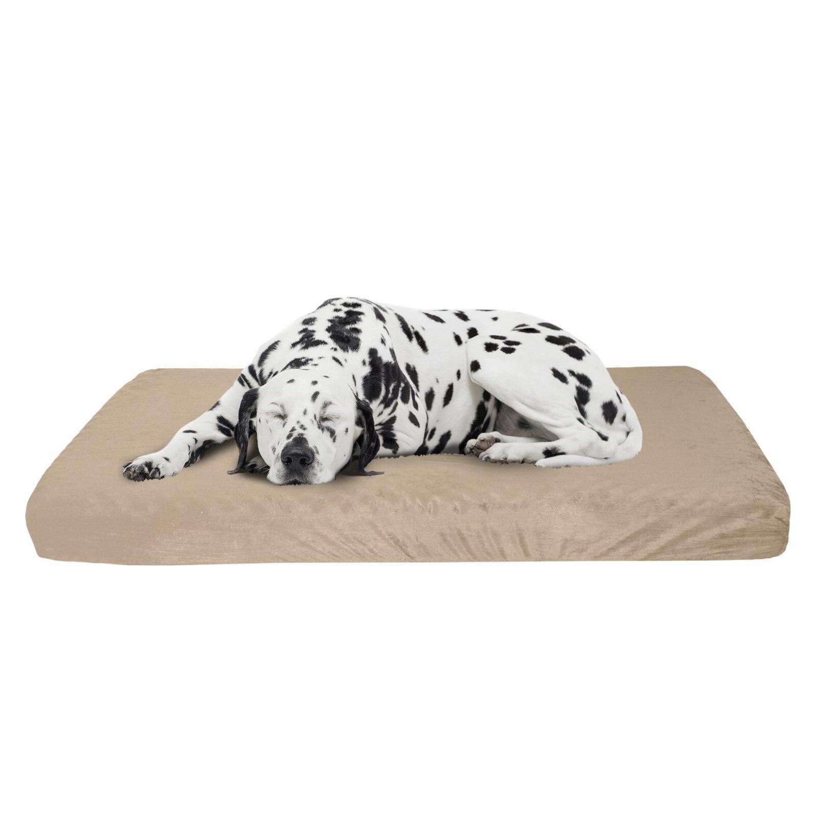 large orthopedic memory foam dog bed