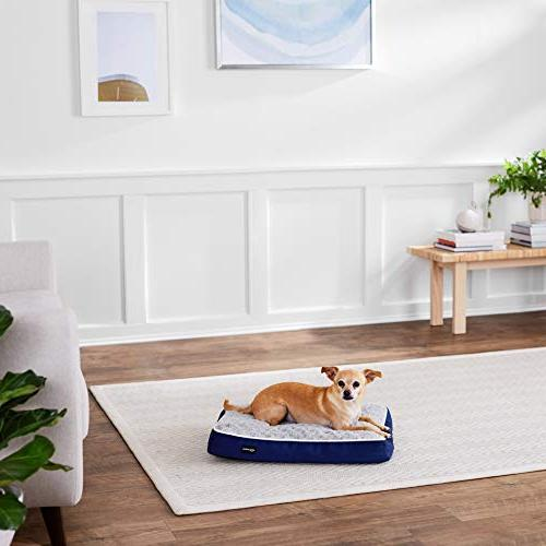 AmazonBasics Foam Dog Bed Removable Cover, x 22-Inch
