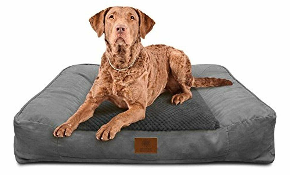 Foam Sofa Dog Brand New