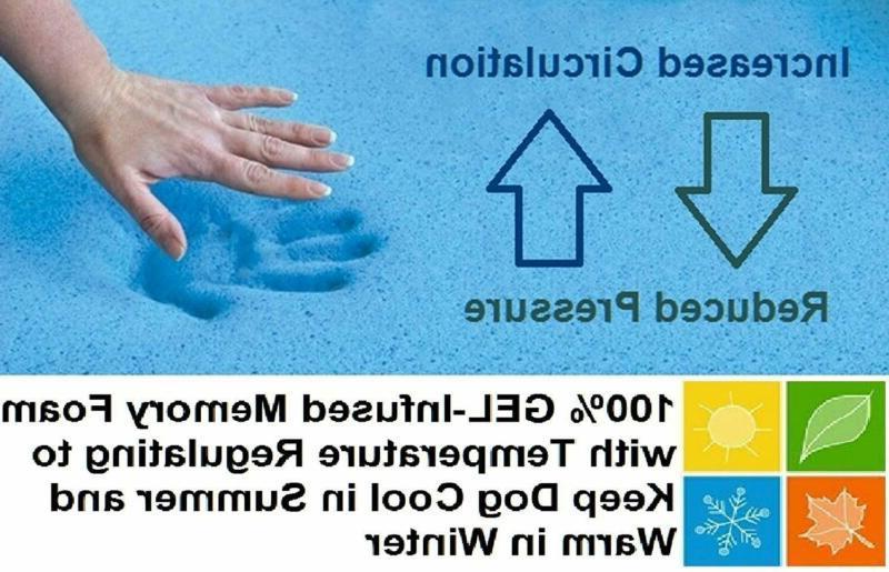 Foam For Small, Medium Large