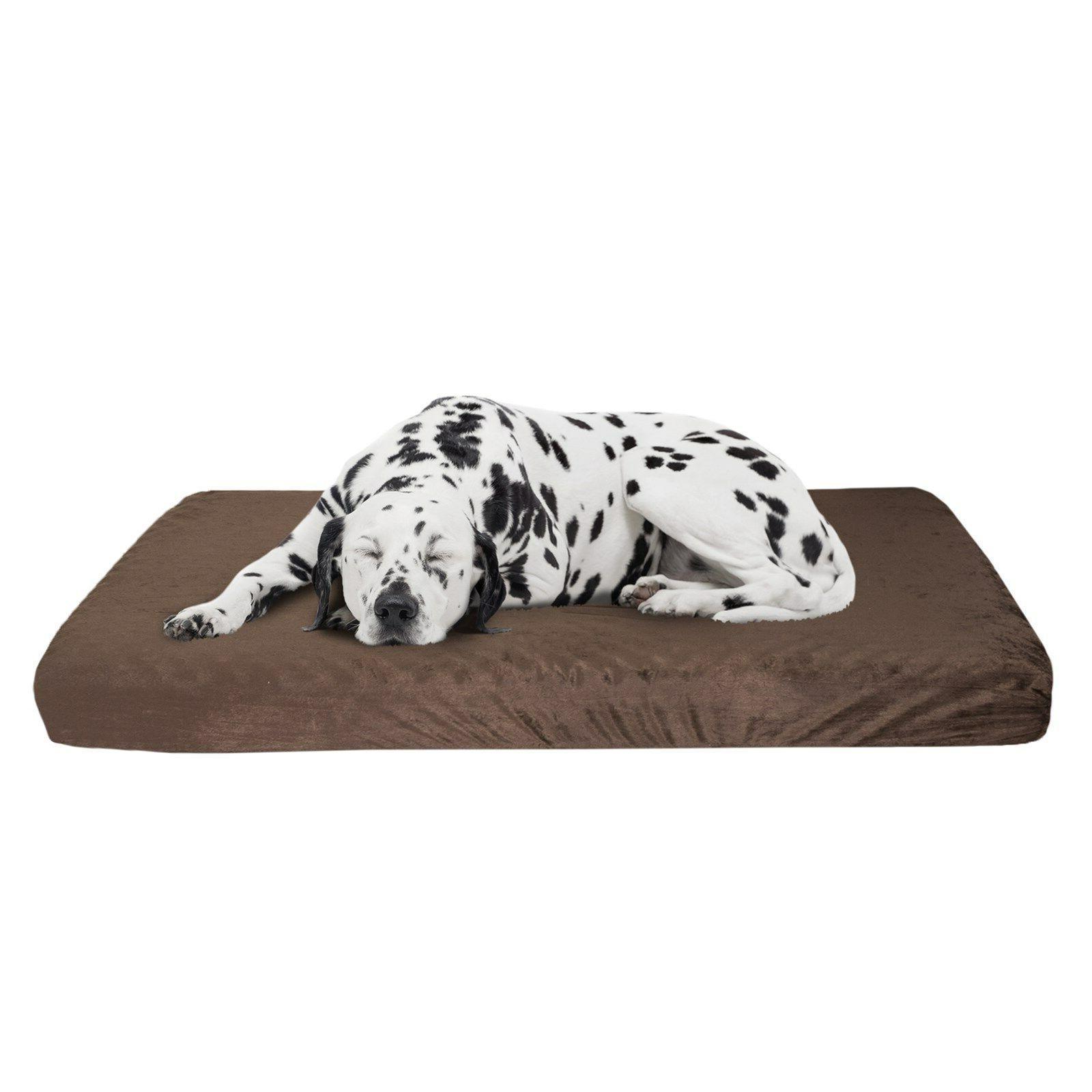 Orthopedic Dog Memory Foam and Egg 46 4 X Large XL