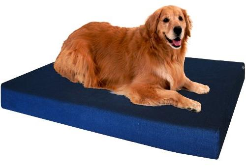 Dogbed4less Memory Foam Bed, Waterproof Liner, Extra Bed
