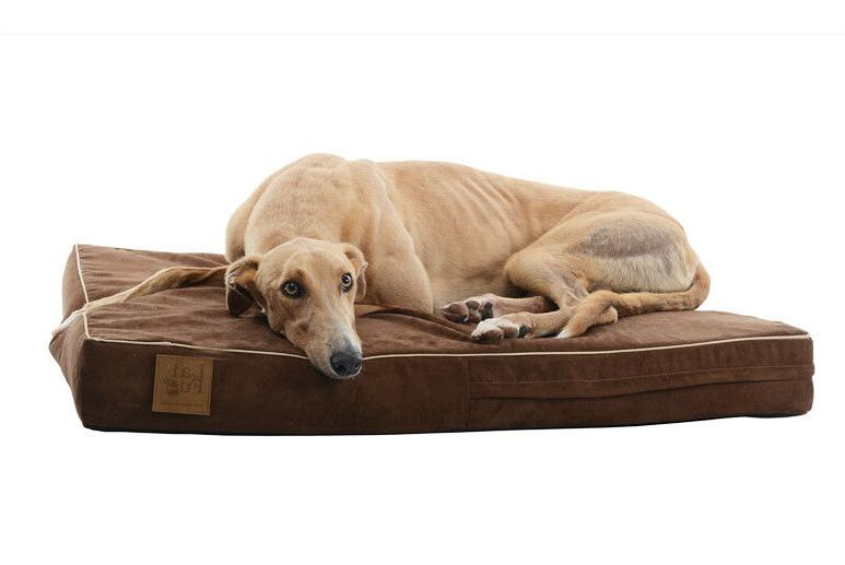 Laifug Orthopedic Memory Foam Dog Bed Durable Waterproof Lin