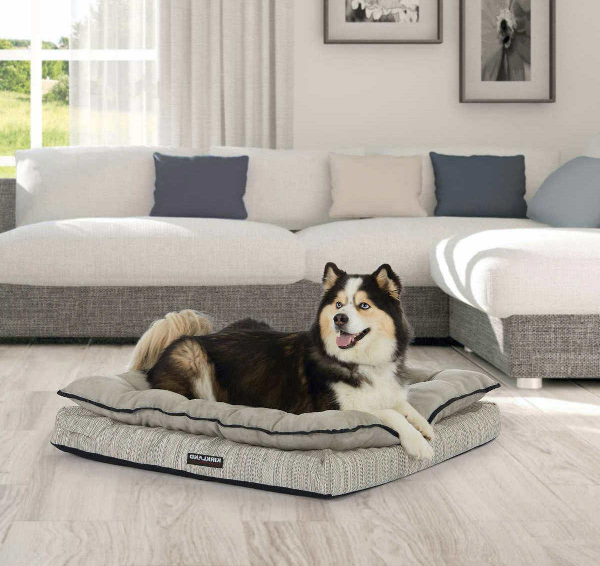 orthopedic napper dog bed 36 x40 machine
