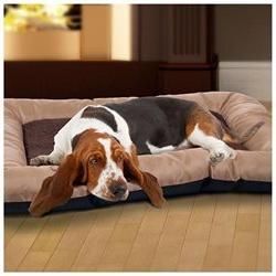 PAW Plush Cozy Pet Crate Dog Pet Bed - Tan - Large
