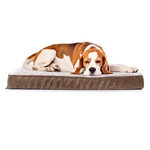Milliard Dog Bed, Foam with Plush Top Washable 47x29x4