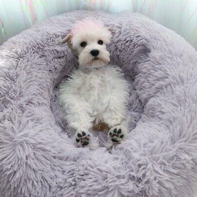 Donut Pet / Cat Soft Calming Sleeping Bed Kennel Nest