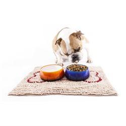 Soggy Doggy Slopmat Small 18-inch x 24-inch Beige Microfiber