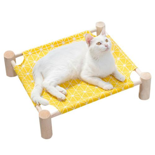 Small Cat Dog Canvas Kitten