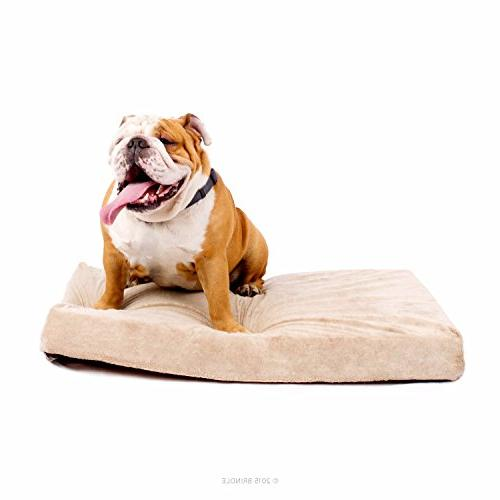 Brindle Inch Memory Foam Orthopedic - Removable Velour Cover with Waterproof Liner - Medium Khaki 34 x