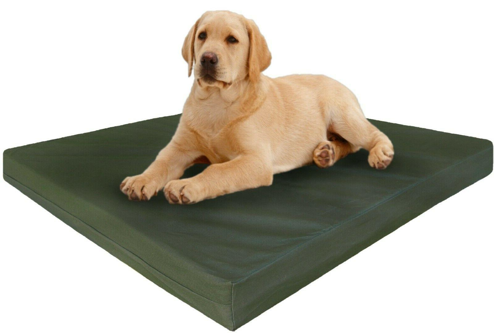 xl extra large orthopedic canvas memory foam