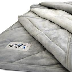 PetFusion Premium Plus Quilted Large Dog Blanket . Light Inn